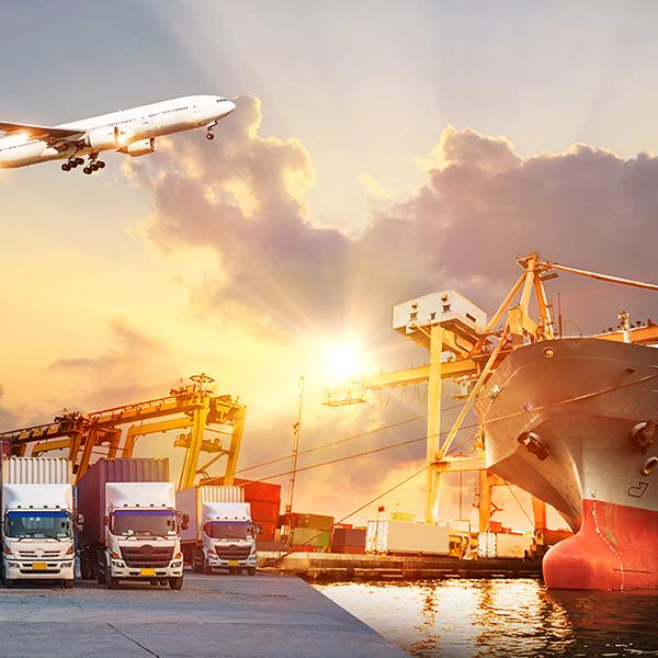 Wholesale Distribution & Logistics Software Solutions